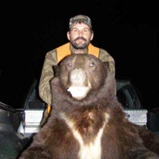 Fall Bear Hunting