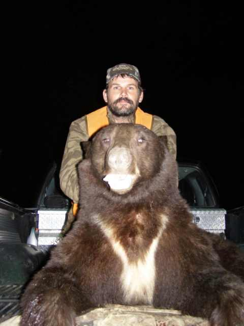 Fall Bear Hunting