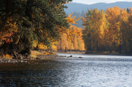 montana fly fishing trip fall foliage
