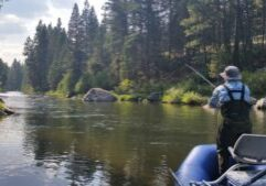 Montana Hunting Fishing Adventures Fly Fishing on the West Fork Bitterrroot river