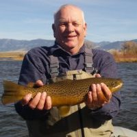 Madison River Brown